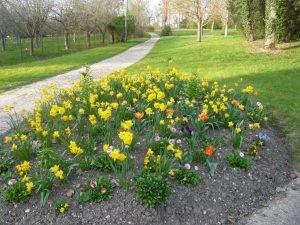 fleurissement au parc du château de Dormans