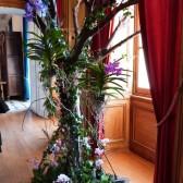 une belle composition avec des orchidées