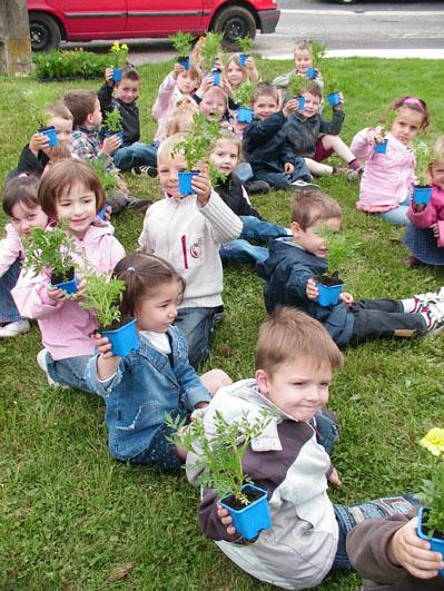 Les élèves tiennent chacun leur pot à fleur avant repiquage