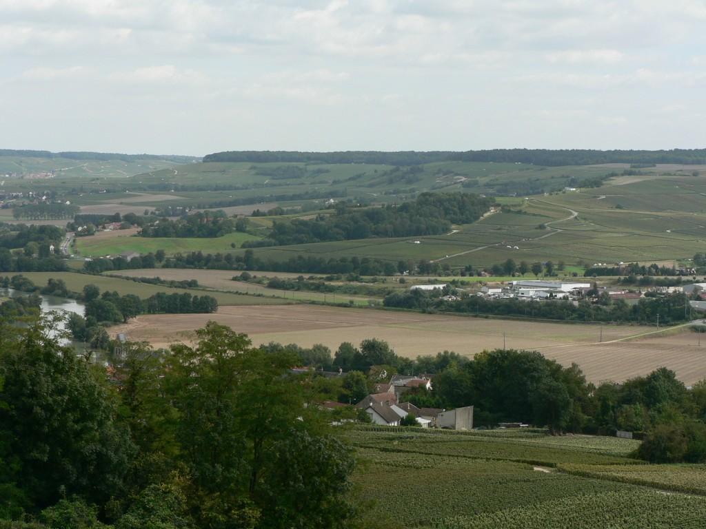 Le vignoble champenois à Dormans entre le hameau de Try et Dormans