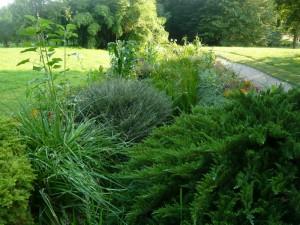 Fleurissement de Dormans, été 2014, parc du château