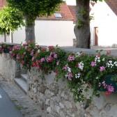 Le fleurissement des hameaux de Dormans, été 2014