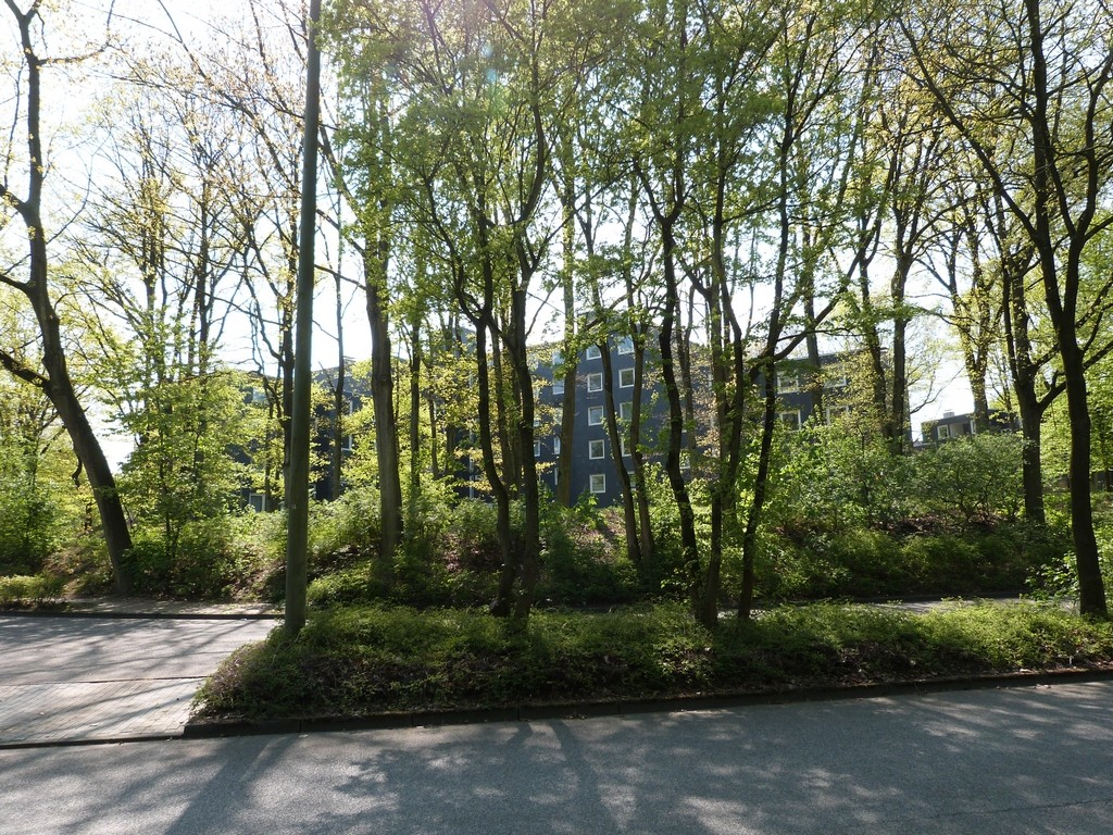 Immeubles entourés d'arbres, Wulfen-Barkenberg, Dorsten