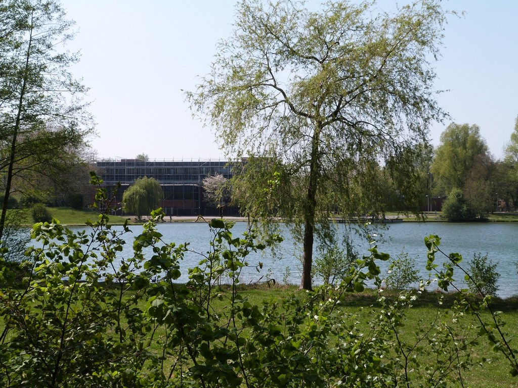 Lac proche d'un établissement scolaire de Wulfen-Barkenberg, Dorsten.