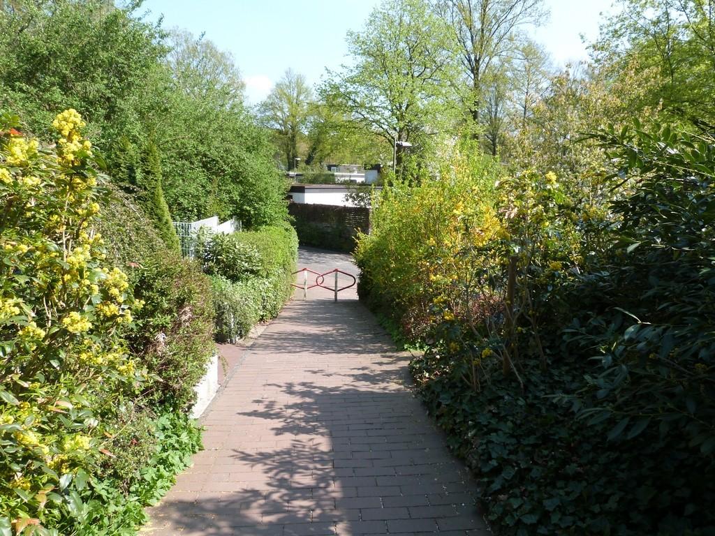 Sentier à Wulfen-Barkenberg, Dorsten
