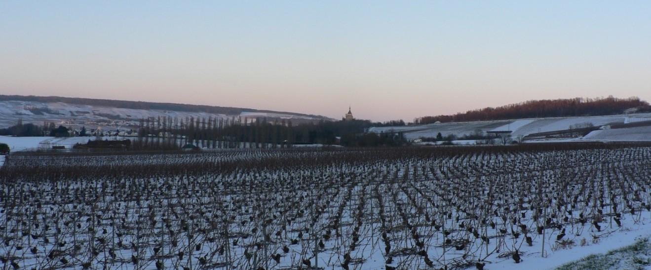 Paysage d'hiver à  Dormans