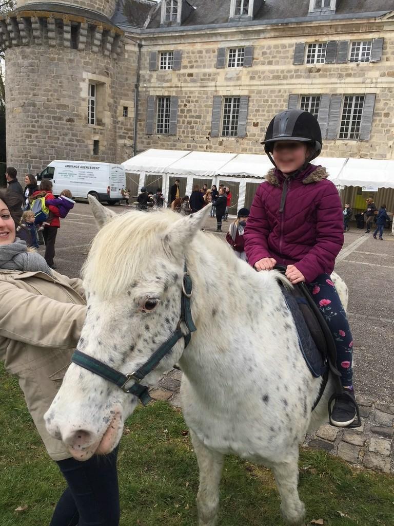 Promenade avec les poneys au parc du château